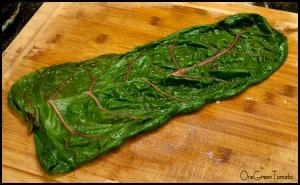 chard leaf overlap